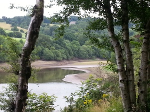 Toddbrook reservoir (2)